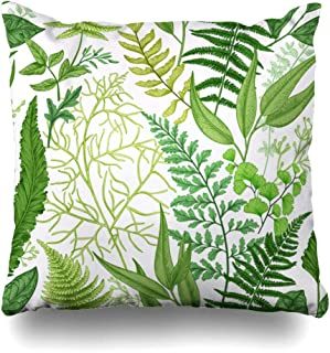 Ahawoso Throw Pillow Cover Pattern Spring Leafy Green Vintage Floral Different Herb Ferns Botanical Leaf Foliage Herbal Decor Zippered Cushion Case 20