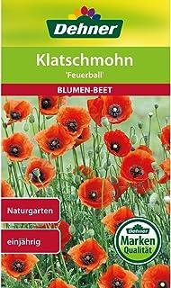 Dehner Blumen-Saatgut, Klatschmohn, Feuerball, 5er Pack 5 x 2.5 g
