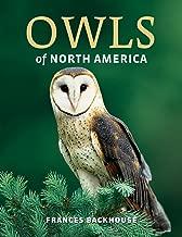 Owls of North America