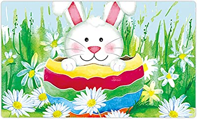 Morigins Cute Bunny in Egg Happy Easter Spring Daisy Indoor Rubber Outdoor Mats 18x30 inch