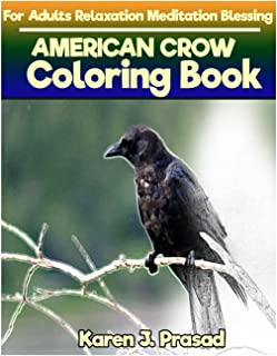 AMERICAN CROW Coloring book for Adults Relaxation  Meditation Blessing: Sketches Coloring Book  Grayscale Images