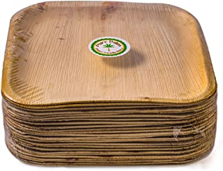 Pure Palm Planet Friendly Palm Leaf Plates; Bamboo-Style, Upscale Disposable Dinnerware; All-natural Biodegradable Plates (10