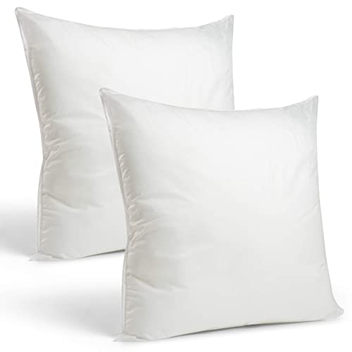 Large Throw Pillows: Amazon.com