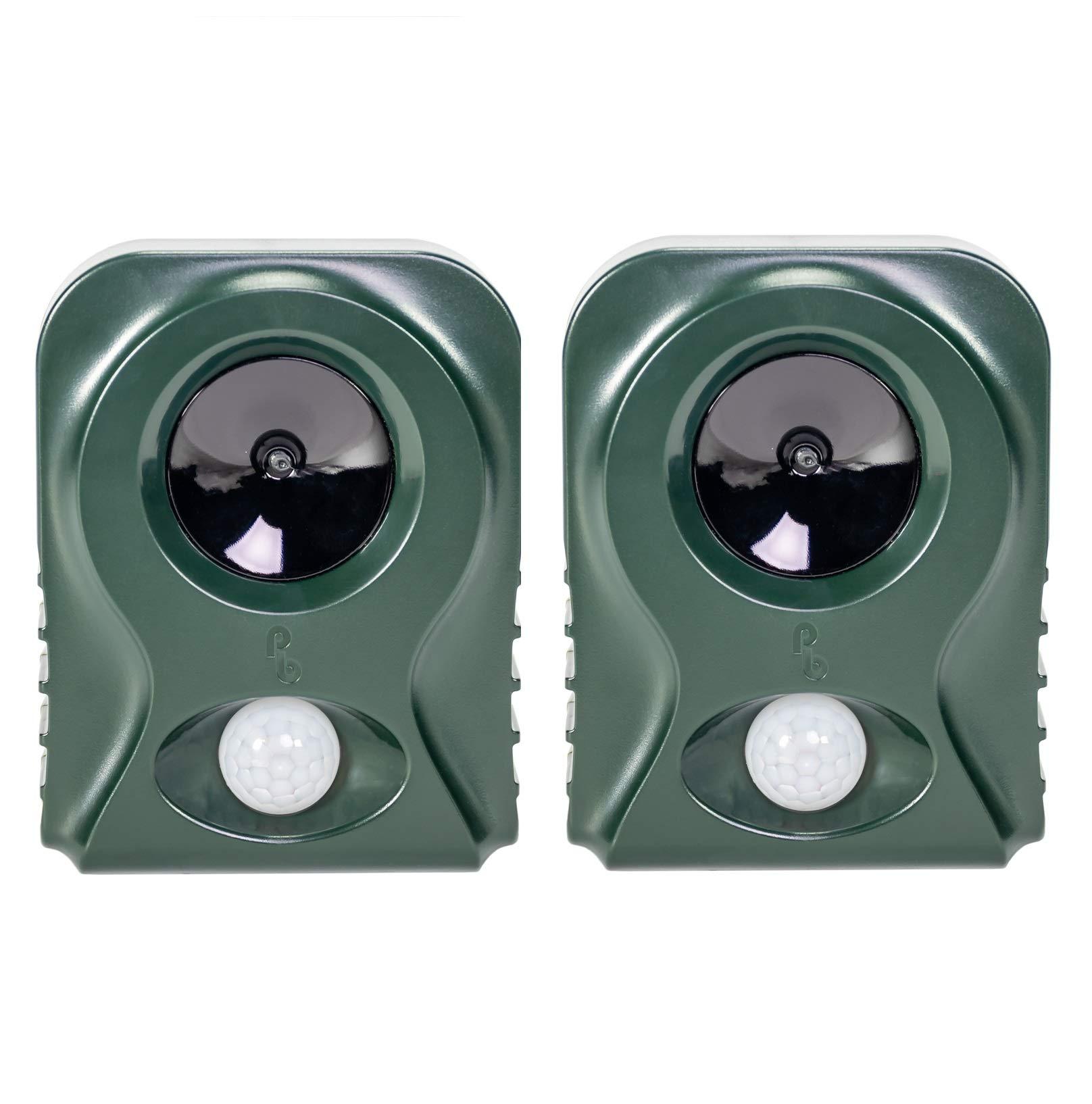 Pestbye Pack de 2 Repelentes de Gatos Sistema HyperResonance Frequency (Pilas), Green: Amazon.es: Jardín