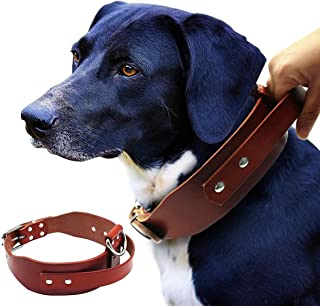 Best sublime band dog collar Reviews