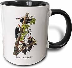 3dRose (mug_114053_4) Pileated Woodpecker by John James Audubon - Two Tone Black Mug, 11oz