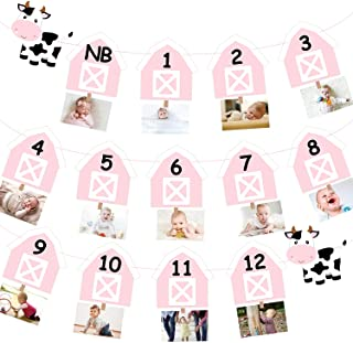 Cow 12 Month Photo Banner 1st Birthday Party Decoration One Cake Smash Pink Farmhouse Animal Photo Backdrop Supplies