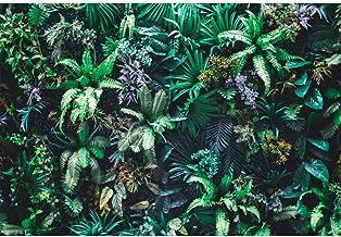 Cassisy 3x2m Vinilo Primavera Telon de Fondo Naturaleza Jardin Vertical Fondo de Pantalla de Hoja Verde Tropical Fondos para Fotografia Party Photo Studio Props Photo Booth