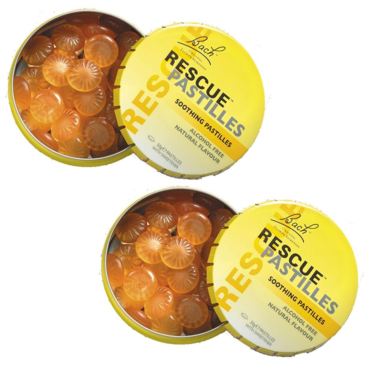 【2個セット】 レスキューパステル 50g 日本国内正規品