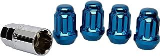 1969 dodge charger blue