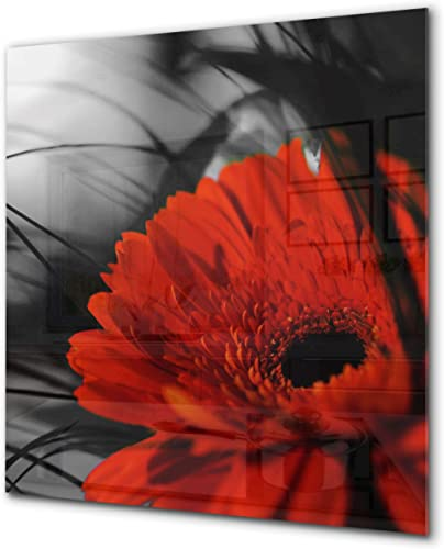Antiprojections cuisine verre – Antiprojections verre sécurité – Antiprojections avec photo BS03 Série fleurs: Fleur ...