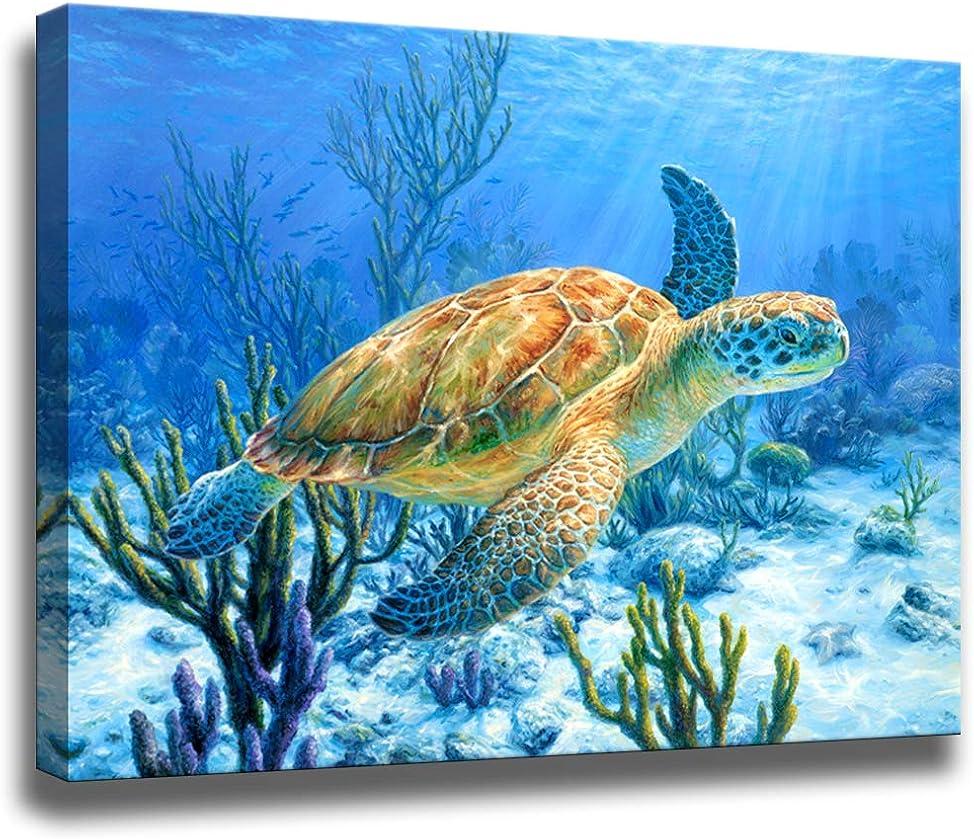 Amazon.com: Bathroom Decor Sea Turtle Pictures Painting Wall Art