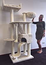 Cat Tree King - Cat mansion for large cats - Beige
