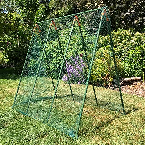 GardenSkill Garden Pea Frame Kit - Complete Support Trellis with Netting to Grow Peas Vegetables Flowers Climbing Plants