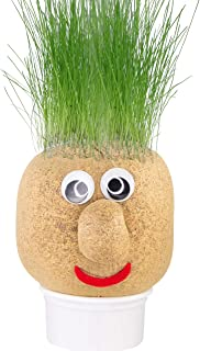 potato grass head