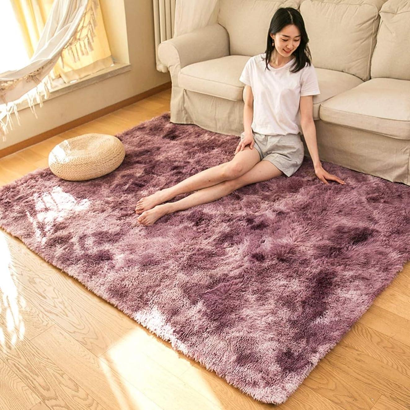 誇りに思う別の頑固なカーペット ラグマット シャギーラグ 北欧 おしゃれ 洗える 200×240cm 絨毯 多色絞り染め ふわふわ 気持ちいい 滑り止め 床保護マット 抗菌防臭 防音 寝室 リビング 雰囲気