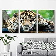 AngelSept Modern Salon Theme Mural South American Jaguar Wild Animal Carnivore Endangered Feline Safari Image Painting Canvas Wall Art for Home Decor 24x36inches 3pcs/Set, Orange Black Green