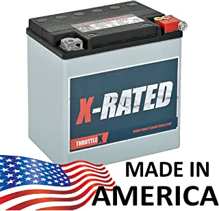 TX30L - Harley Davidson Replacement Motorcycle Battery