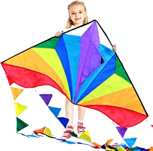 HONBO Large Delta Kites 60x 34 for Kids and Adults for Beach Trip Outdoor Games,Perfect for Beginners,String Line Included Toys Easy to Fly Kites with Colorful Colors Tail