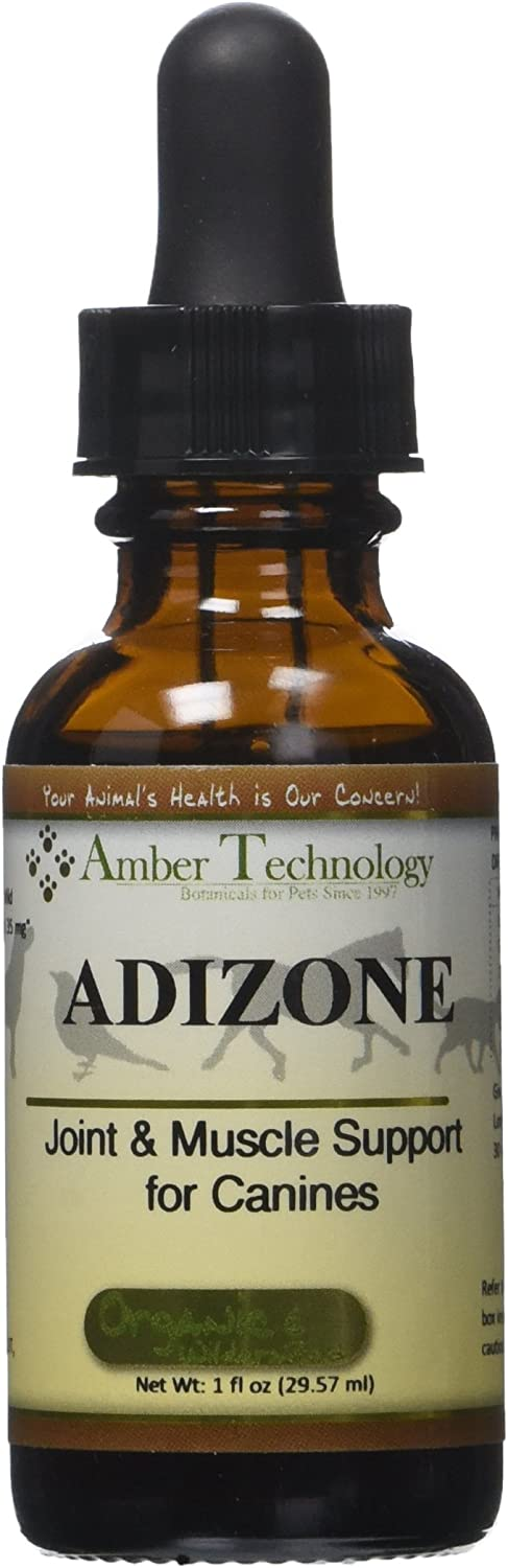 Amber Technology AllNatural AntiInflammatory Pain Reliever for Dogs, 1 oz.