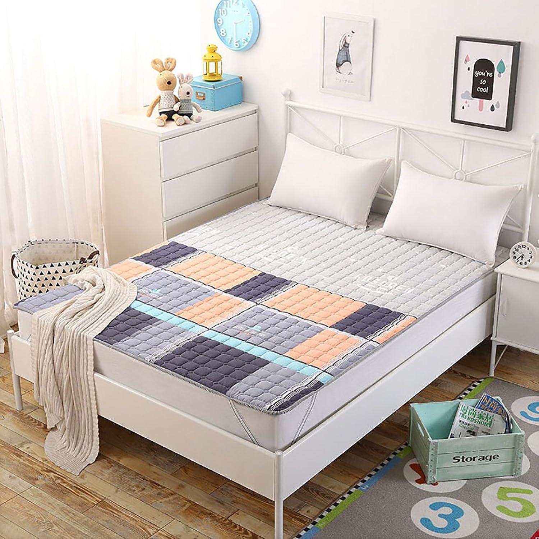 DULPLAY Cotton Mattress,Mattress Topper,Non-Slip Mattress Pads,Floor Mat Bed Pads Four Seasons Mat Foldable Plush Soft Mat-B 90x200cm(35x79inch)