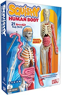 anatomy gifts for kids