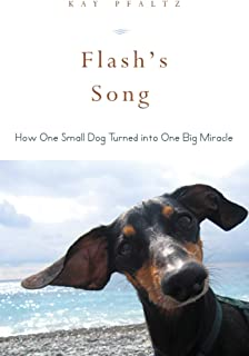 Flash's Song: How One Small Dog Turned into One Big Miracle