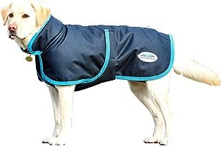 dog coat 16