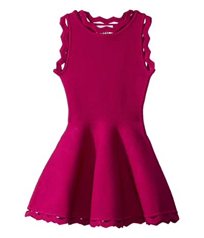 Milly Minis Zigzag Trim Flare Dress (Toddler/Little Kids) (Magenta) Girl