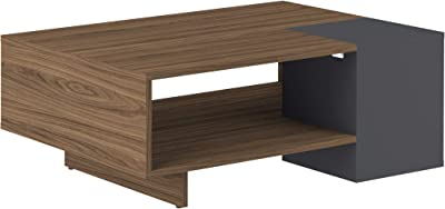 Temahome 2490A0900X00 Kube Table Basse Panneaux de Particules/Mélamine Noyer 89 X 34 X 67 cm