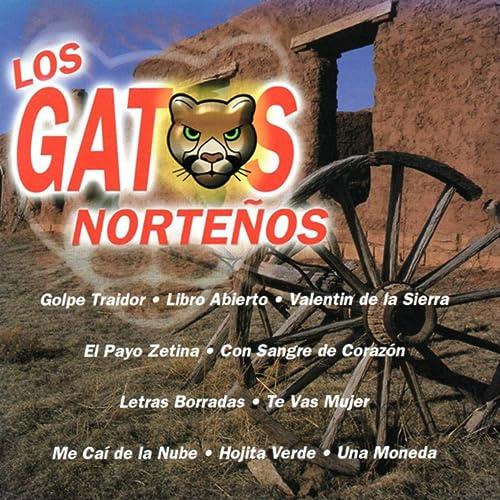Los Gatos Norteños