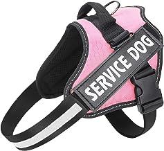 Amazon.com: service dog vest
