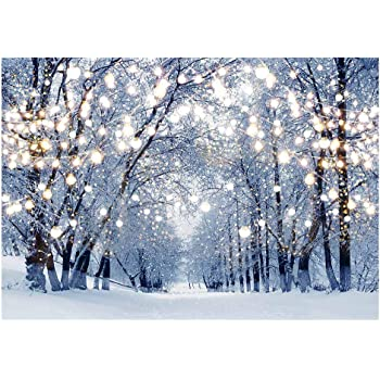 DORCEV 12x10ft Winter Frozen Snow Forest Photography Backdrop Ice Snow World Heavy Fog Background Enchanted Forest Christmas New Year Party Banner Kids Adult Photo Wallpaper