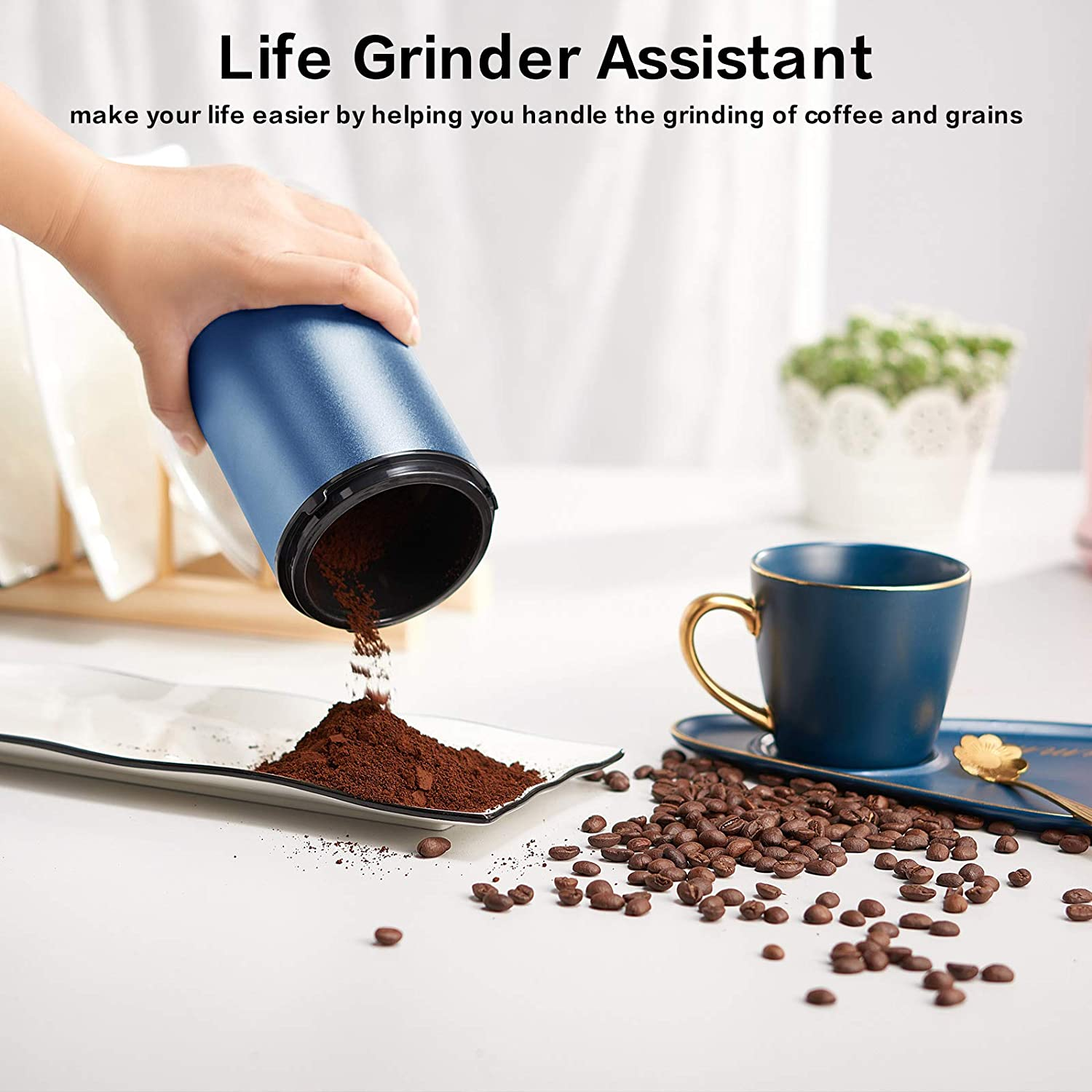 Kitchen & Dining Small Appliances Coffee Grinder and Spice Grinder ...