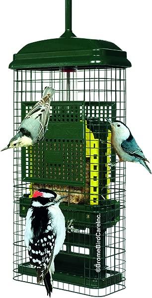 松鼠巴斯特 1106 V01 2 面包屑端口乱七八糟免费装载松鼠防鸟喂食器 2 羊脂蛋糕绿色