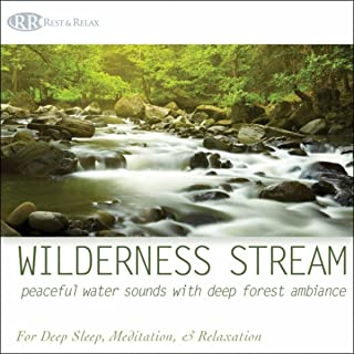 Wilderness Stream: Peaceful Water Sounds With Deep Forest Ambiance Nature Sounds for Deep Sleep, Meditation, & Relaxation