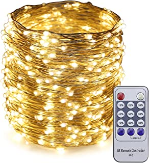 ER CHEN 165ft Led String Lights,500 Led Starry Lights on 50M Silvery Copper Wire String Lights + 12V DC Power Adapter + Remote Control(Warm White)