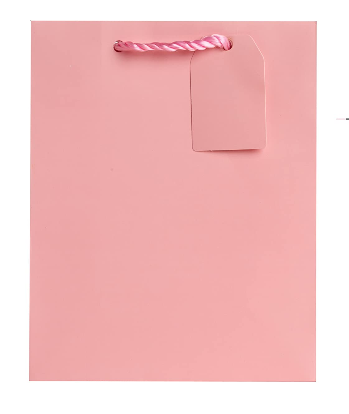 Jillson Roberts Bulk Medium Gift Bags Available in 19 Colors, Pastel Pink Matte, 120-Count (BMT902)