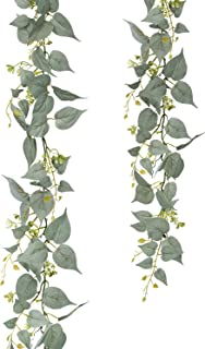 Best floral vines plants Reviews