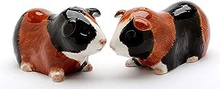 Fine Porcelain Guinea Pig Salt and Pepper Shakers Set, 3-7/8