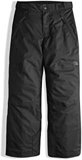 The North Face Boy's Freedom Insulated Pant