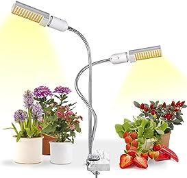 Best indoor growing lights for plants