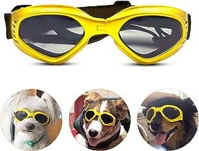 yellow dog glass