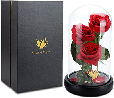 Dream of Flowers 美女と野獣のバラ 永遠のバラ 魅惑的なバラ ガラスドーム ブラックウッドベース バレンタインパーティーギフト ウェディングギフト 彼女への最高のギフト