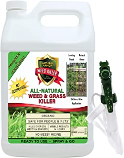 grass and weed killer glyphosate concentrate