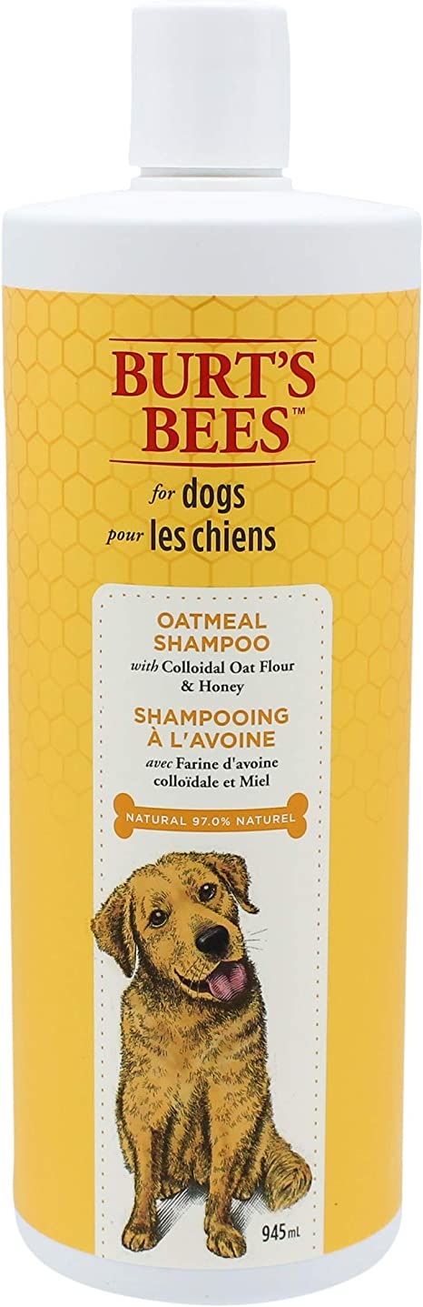 Burt's Bees for Dogs Natural Oatmeal Conditioner with Colloidal Oat Flour and Honey | Puppy and Dog Shampoo