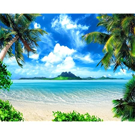 Image of Palm Trees on Exotic Beach at Sunset with Waves in The Ocean Dominican Paradise Background for Child Baby Shower Photo Vinyl Studio Prop Photobooth Photoshoot 10x12 FT Photography Backdrop