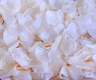 DALAMODA 1000pcs Silk Rose Petals Bouquet Artificial Flower Wedding Party Aisle Decor Tabl Scatters Confett (Champagne #2 Light)