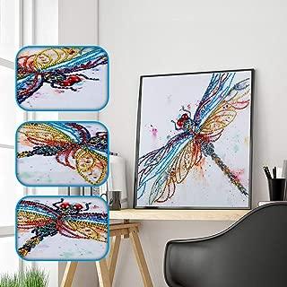 Bigfanshu Kids' Home Store Special Shaped Diamond Painting DIY 5D Partial Drill Cross Stitch Kits Crystal R