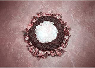 Photo Backdrop Newborn 7x5 Bird Nest Vine and Flowers Background Baby Portrait Photos Pink Rose Abstract Photography Backgrounds Seamless Infant Photo Studio Backgdrops